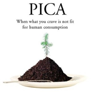 Pica Eating Disorder Eating Disorders Treatment Center